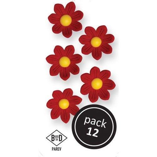 PME Spiselige blomster Røde tusenfryd pk/12